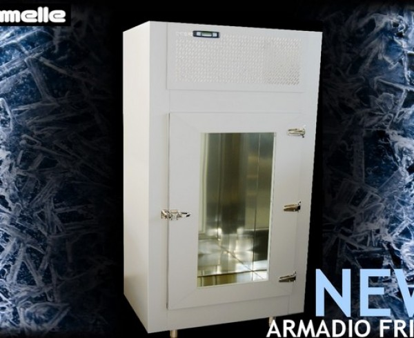 Armadio Frigo - Emmelle Arredamenti eisdiele Kühlschränke